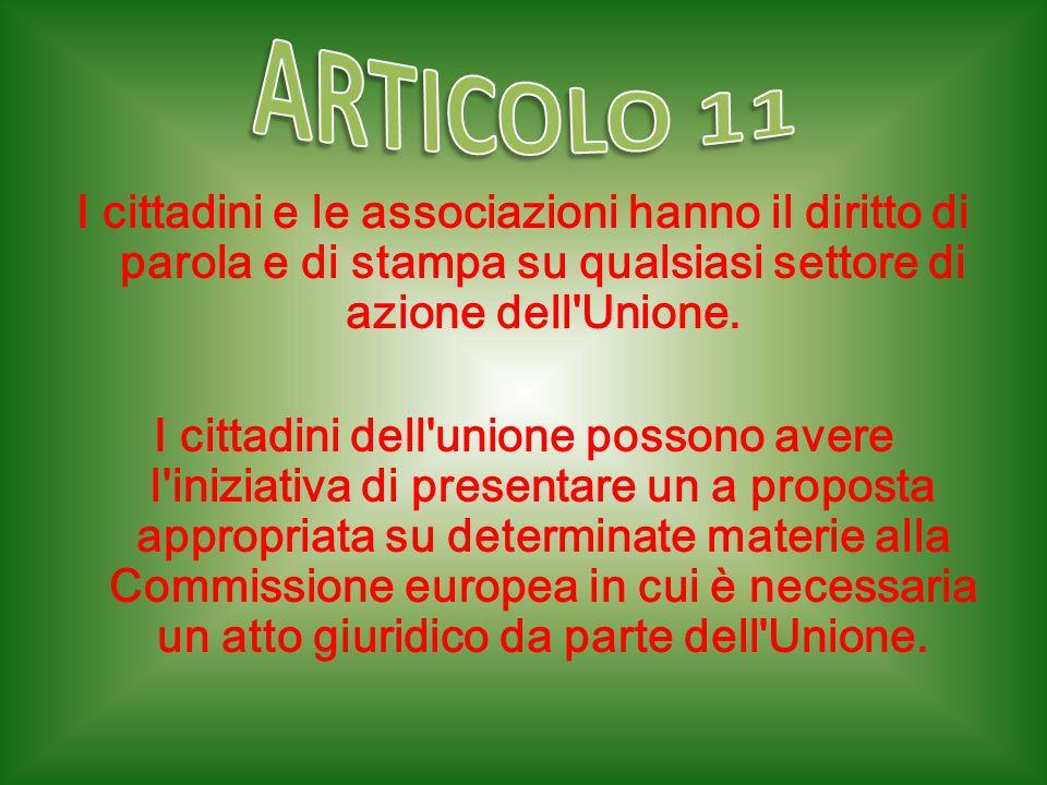 I cittadini e le associazioni hanno il diritto di parola e di stampa su qualsiasi settore di azione dell'Unione. I cittadini dell'unione possono avere