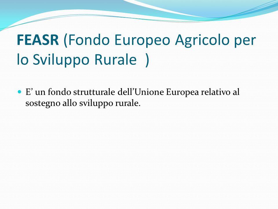 FEASR (Fondo Europeo Agricolo per lo Sviluppo Rurale ) E' un fondo strutturale dell'Unione Europea relativo al sostegno allo sviluppo rurale.
