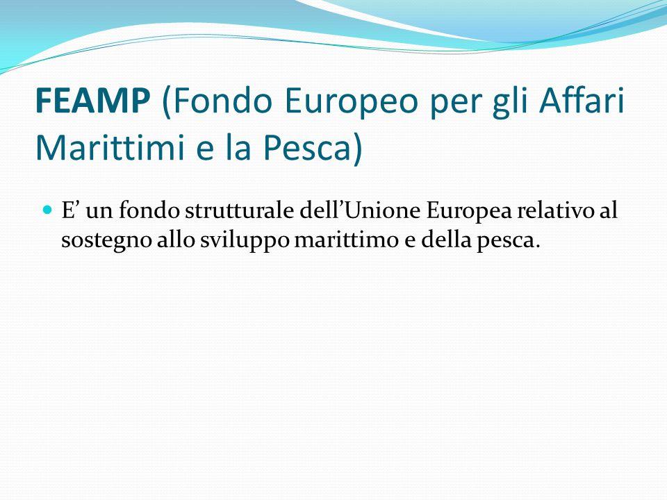 FEAMP (Fondo Europeo per gli Affari Marittimi e la Pesca) E' un fondo strutturale dell'Unione Europea relativo al sostegno allo sviluppo marittimo e d