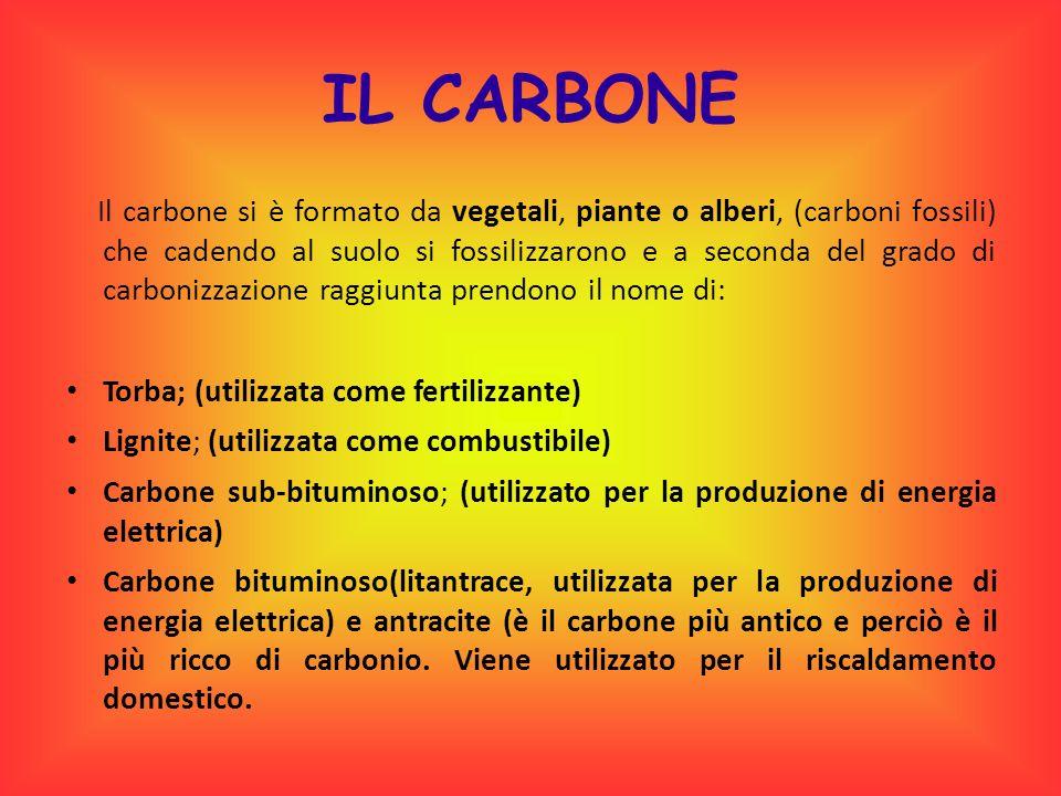 IL CARBONE Il carbone si è formato da vegetali, piante o alberi, (carboni fossili) che cadendo al suolo si fossilizzarono e a seconda del grado di car