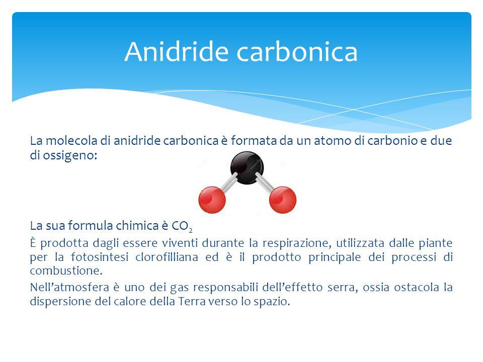 La molecola di anidride carbonica è formata da un atomo di carbonio e due di ossigeno: La sua formula chimica è CO 2 È prodotta dagli essere viventi d