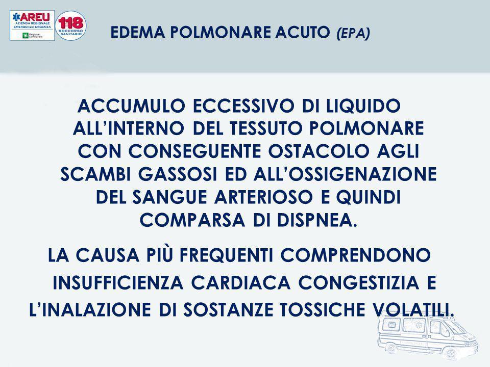 ACCUMULO ECCESSIVO DI LIQUIDO ALL'INTERNO DEL TESSUTO POLMONARE CON CONSEGUENTE OSTACOLO AGLI SCAMBI GASSOSI ED ALL'OSSIGENAZIONE DEL SANGUE ARTERIOSO