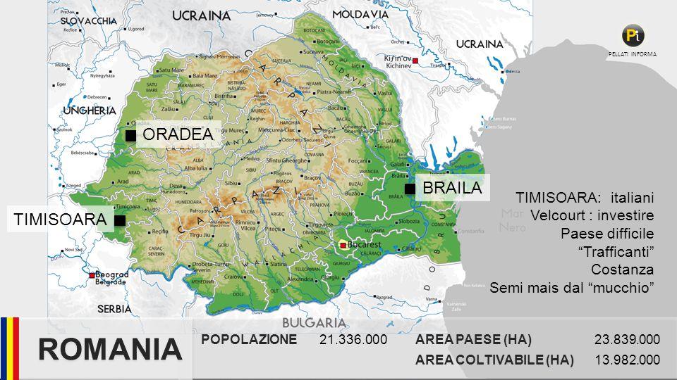 POPOLAZIONE21.336.000AREA PAESE (HA)23.839.000 AREA COLTIVABILE (HA)13.982.000 ROMANIA PELLATI INFORMA TIMISOARA: italiani Velcourt : investire Paese difficile Trafficanti Costanza Semi mais dal mucchio TIMISOARA ORADEA BRAILA