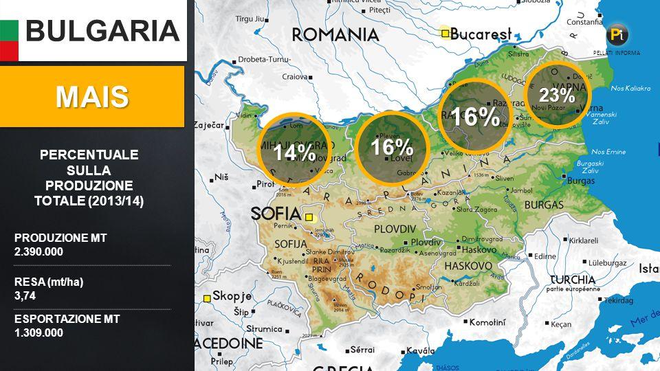 BULGARIA PRODUZIONE MT 2.390.000 RESA (mt/ha) 3,74 ESPORTAZIONE MT 1.309.000 16% 23% 14% MAISMAIS 16% PELLATI INFORMA PERCENTUALE SULLA PRODUZIONE TOTALE (2013/14)