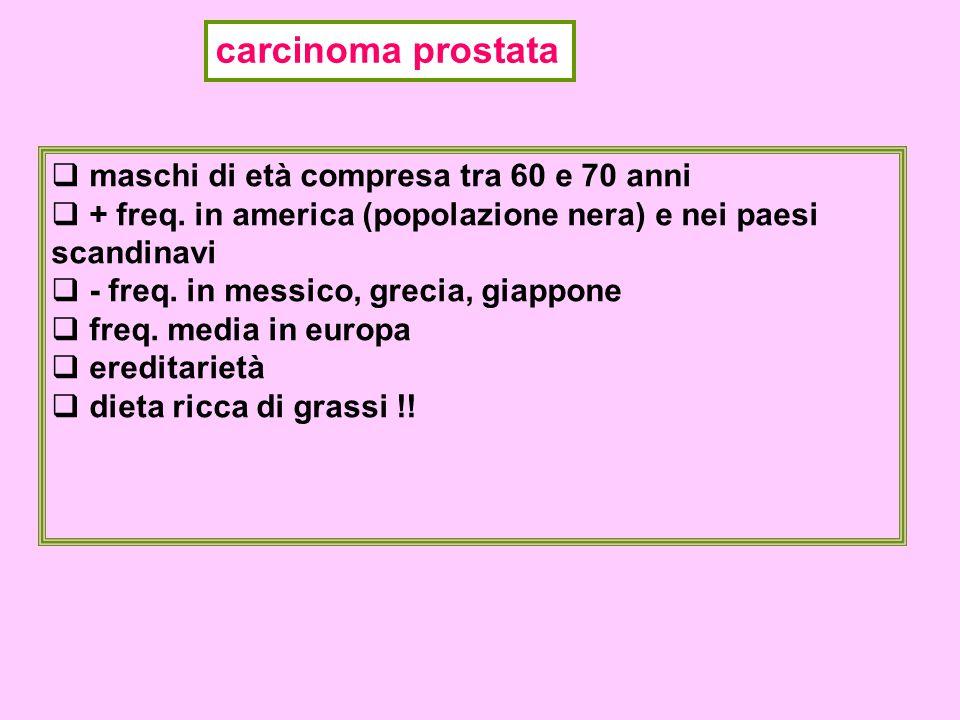 carcinoma prostata  maschi di età compresa tra 60 e 70 anni  + freq.