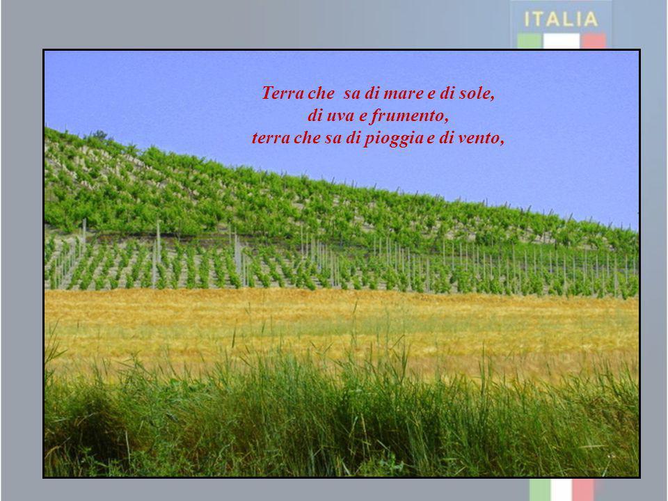 Terra che sa di mare e di sole, di uva e frumento, terra che sa di pioggia e di vento,