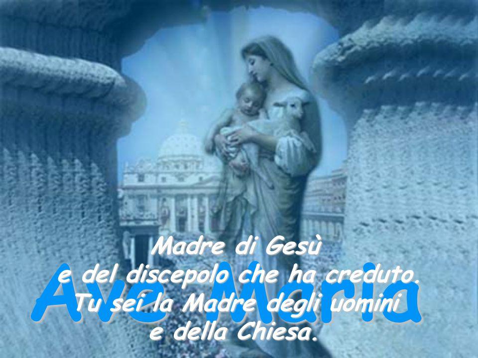 Ave Maria Madre di Gesù e del discepolo che ha creduto. Tu sei la Madre degli uomini e della Chiesa.