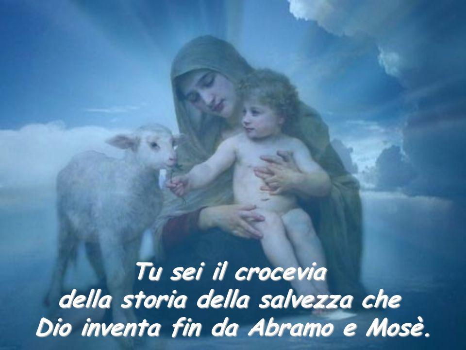Tu sei il crocevia della storia della salvezza che Dio inventa fin da Abramo e Mosè.