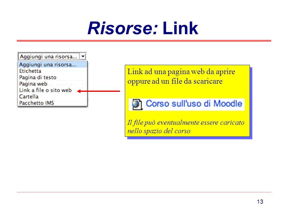 13 Risorse: Link Link ad una pagina web da aprire oppure ad un file da scaricare Il file può eventualmente essere caricato nello spazio del corso Link ad una pagina web da aprire oppure ad un file da scaricare Il file può eventualmente essere caricato nello spazio del corso