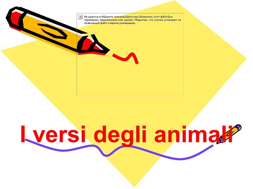I versi degli animali