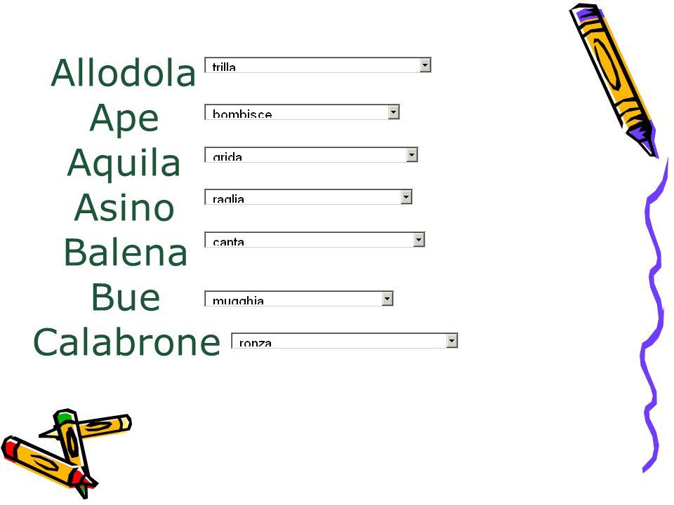 Allodola Ape Aquila Asino Balena Bue Calabrone