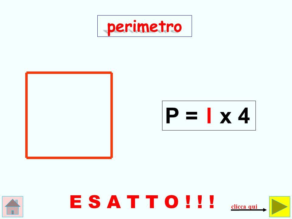 4 SBAGLIATO ! ! ! perimetro P = l+ 4 controlla