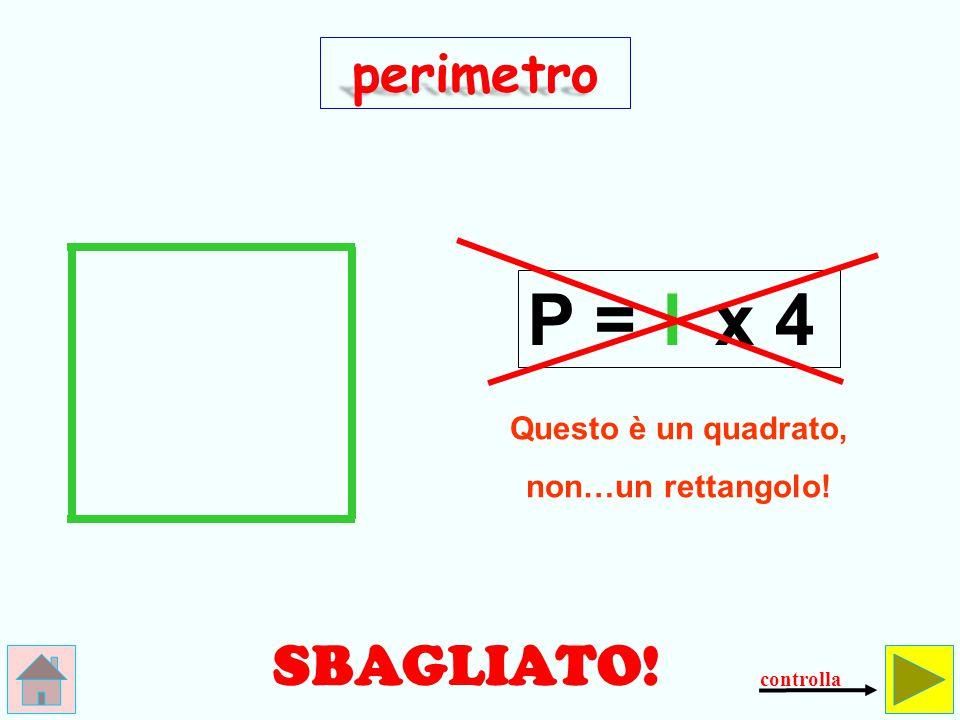 Qual è il perimetro del rettangolo.