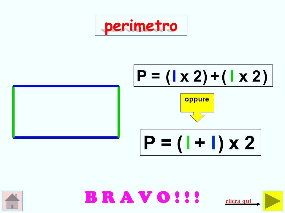 SBAGLIATO! Questo è un quadrato, non…un rettangolo! perimetro P = lx 4 controlla