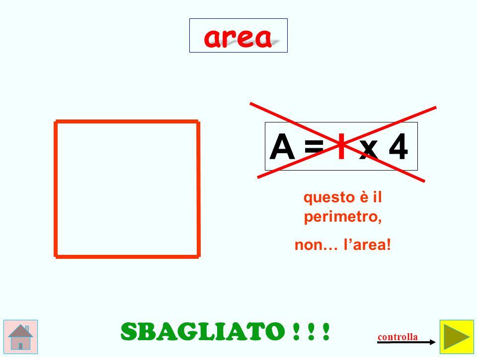 Come si calcola l'area del quadrato.