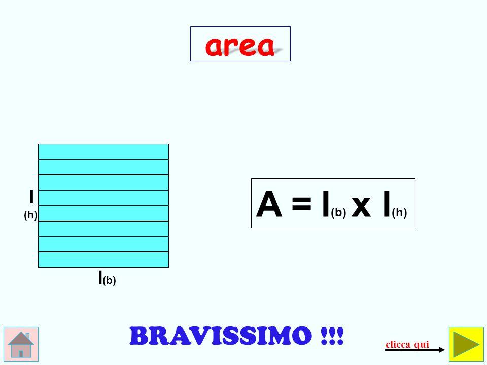 SBAGLIATO ! ! ! questo è il perimetro, non… l'area! area A = l x 4 controlla