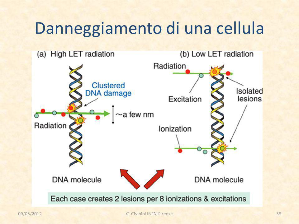 Danneggiamento di una cellula 09/05/201238C. Civinini INFN-Firenze