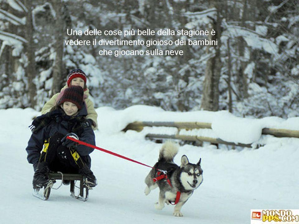Una delle cose più belle della stagione è vedere il divertimento gioioso dei bambini che giocano sulla neve
