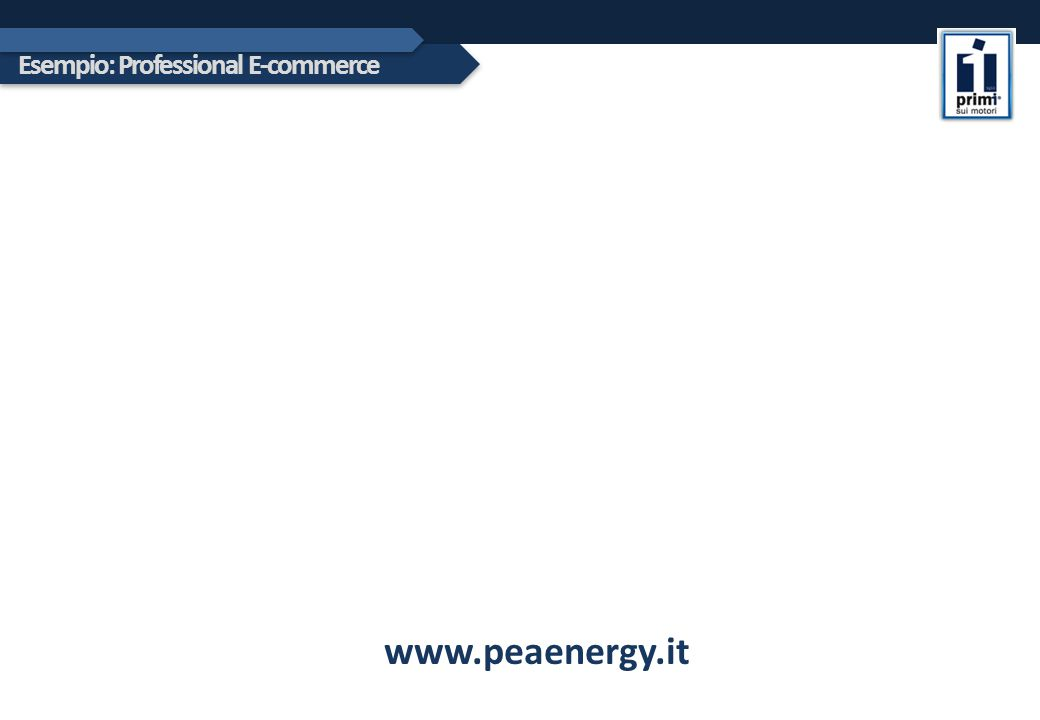 Esempio: Professional E-commerce www.peaenergy.it