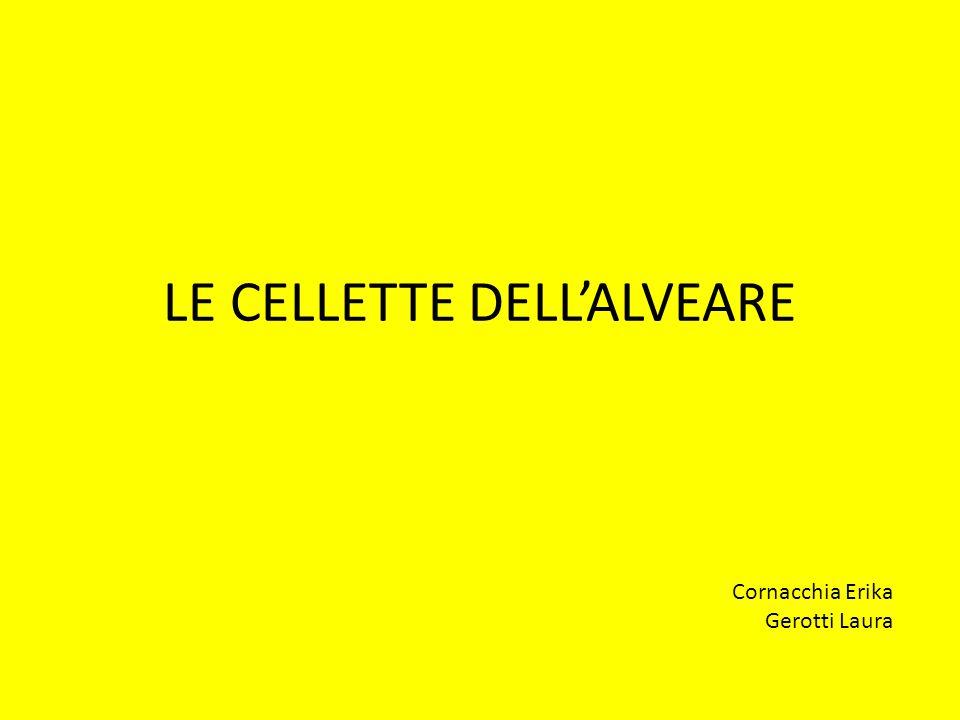 LE CELLETTE DELL'ALVEARE Cornacchia Erika Gerotti Laura