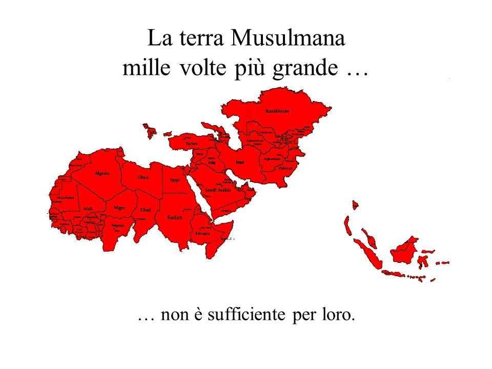 La terra Musulmana mille volte più grande … … non è sufficiente per loro.
