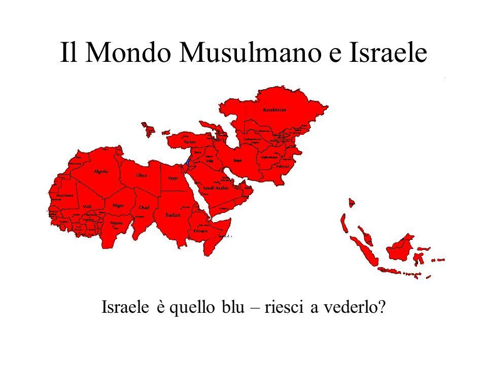 Il Mondo Musulmano e Israele Israele è quello blu – riesci a vederlo?