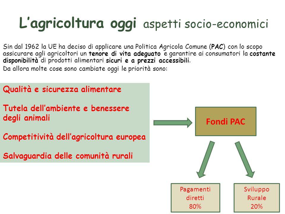 L'agricoltura oggi aspetti socio-economici Sin dal 1962 la UE ha deciso di applicare una Politica Agricola Comune (PAC) con lo scopo assicurare agli agricoltori un tenore di vita adeguato e garantire ai consumatori la costante disponibilità di prodotti alimentari sicuri e a prezzi accessibili.