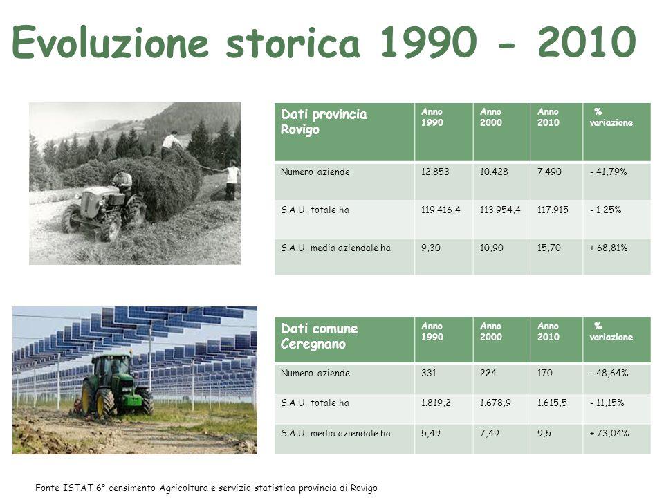 Evoluzione storica 1990 - 2010 Dati provincia Rovigo Anno 1990 Anno 2000 Anno 2010 % variazione Numero aziende12.85310.4287.490- 41,79% S.A.U.