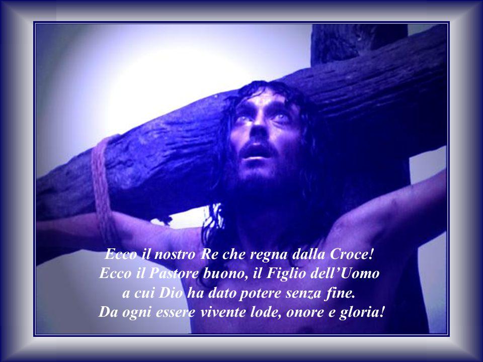 Ecco il nostro Re che regna dalla Croce! Ecco il Pastore buono, il Figlio dell'Uomo a cui Dio ha dato potere senza fine. Da ogni essere vivente lode,