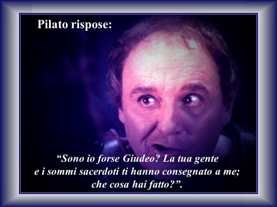 """Pilato rispose: """"Sono io forse Giudeo? La tua gente e i sommi sacerdoti ti hanno consegnato a me; che cosa hai fatto?""""."""