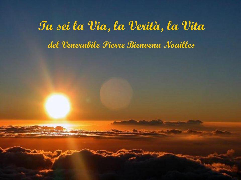 Tu sei la Via, la Verità, la Vita del Venerabile Pierre Bienvenu Noailles