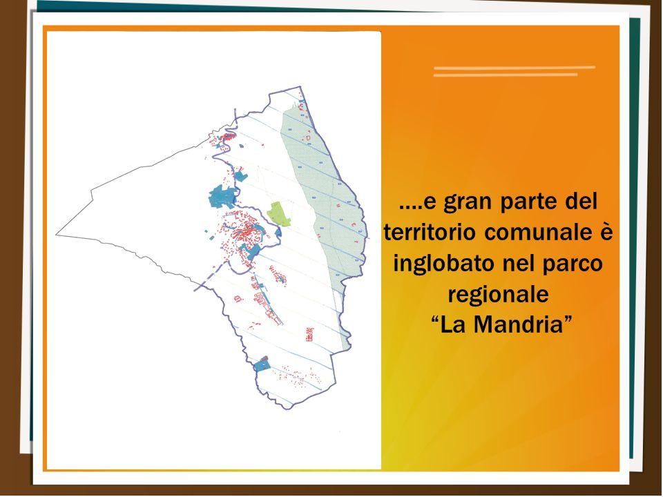 """….e gran parte del territorio comunale è inglobato nel parco regionale """"La Mandria"""""""