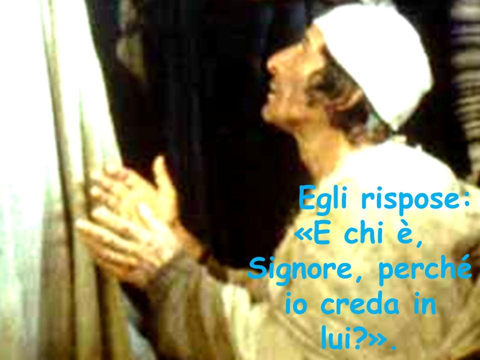 Egli rispose: «E chi è, Signore, perché io creda in lui?».