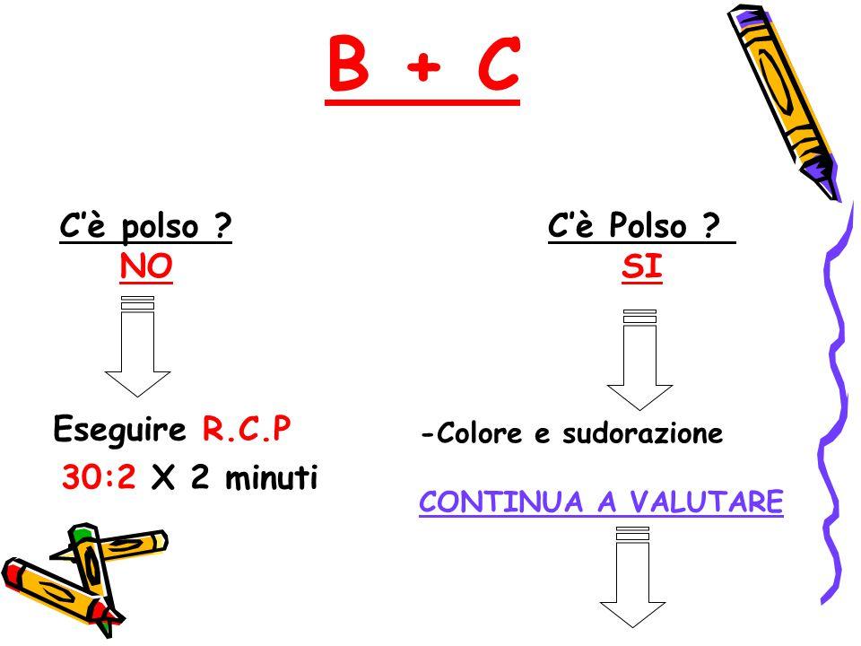B + C C'è Polso ? SI C'è polso ? NO Eseguire R.C.P 30:2 X 2 minuti -Colore e sudorazione CONTINUA A VALUTARE