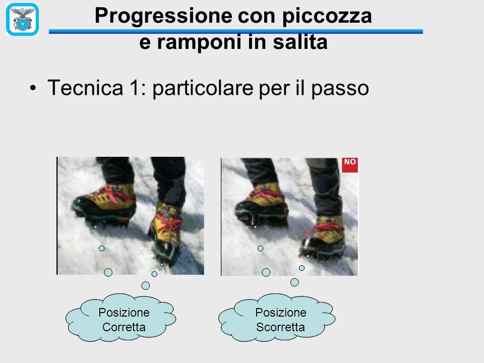 Progressione con piccozza e ramponi in salita Tecnica 1: particolare per il passo Posizione Corretta Posizione Corretta Posizione SCORRETA Posizione S