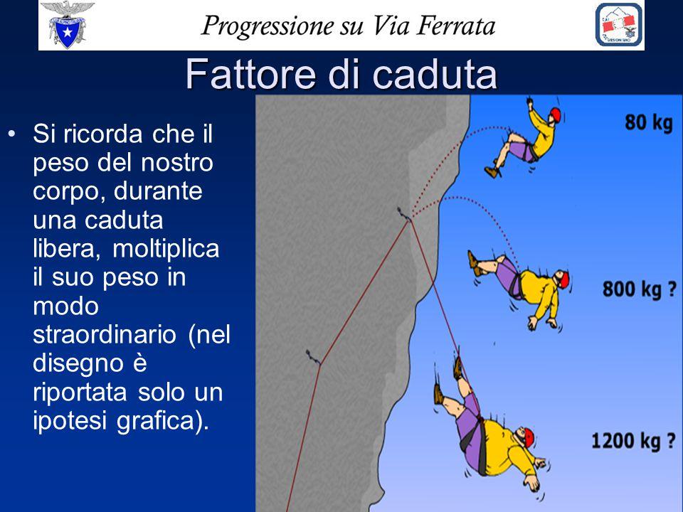 Fattore di caduta Si ricorda che il peso del nostro corpo, durante una caduta libera, moltiplica il suo peso in modo straordinario (nel disegno è ripo