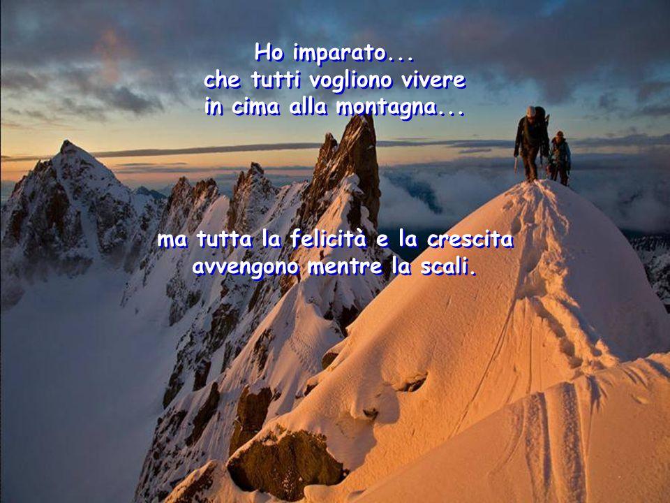 Ho imparato... che tutti vogliono vivere in cima alla montagna... Ho imparato... che tutti vogliono vivere in cima alla montagna... ma tutta la felici