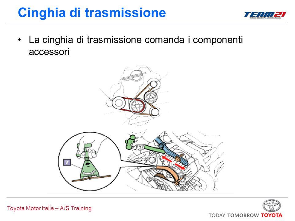 Toyota Motor Italia – A/S Training Cinghia di trasmissione Quando si sostituisce la cinghia di trasmissione che comanda l'alternatore, scollegare il cavo negativo della batteria (-)