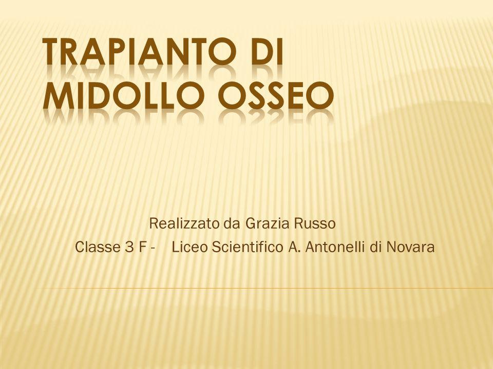 Realizzato da Grazia Russo Classe 3 F - Liceo Scientifico A. Antonelli di Novara