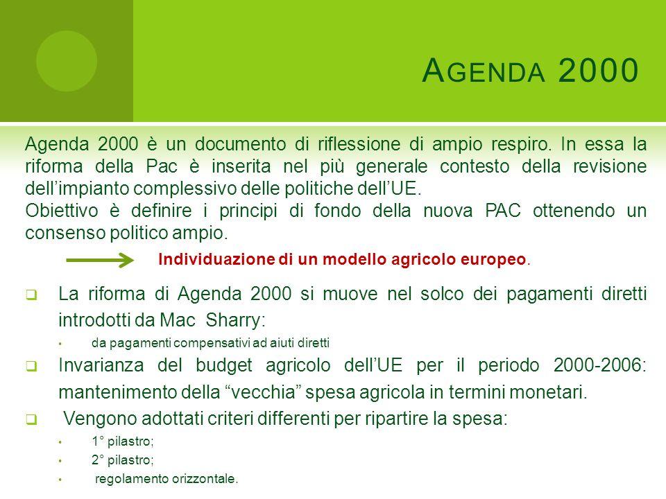 A GENDA 2000 Agenda 2000 è un documento di riflessione di ampio respiro.