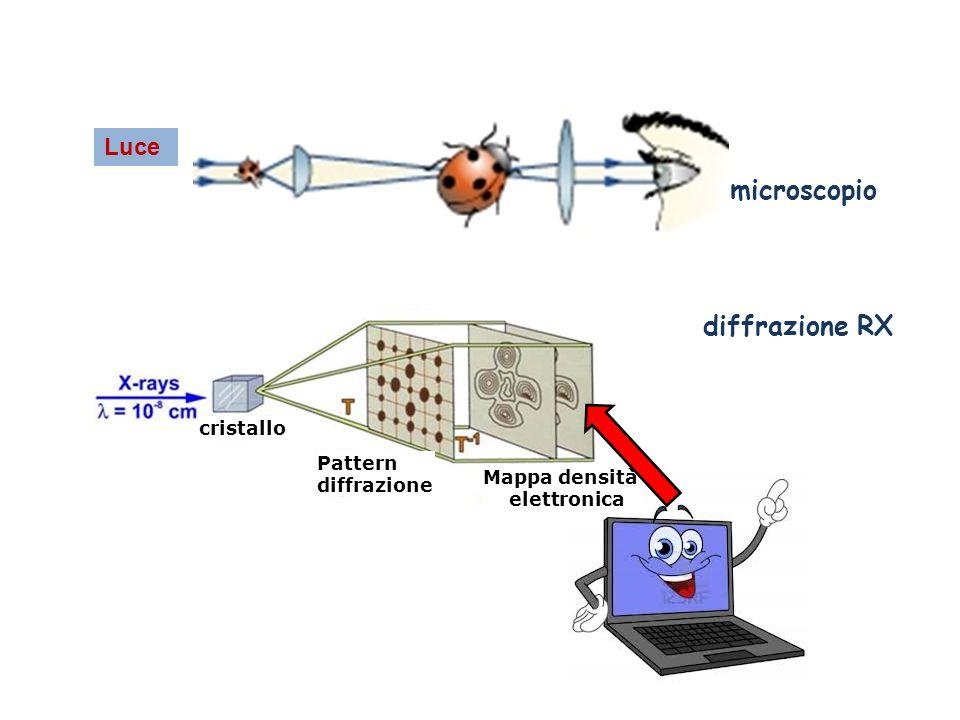 microscopio diffrazione RX Luce Pattern diffrazione cristallo Mappa densità elettronica