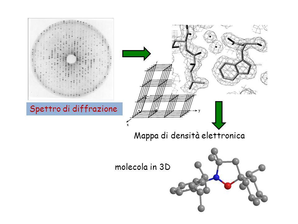 Spettro di diffrazione Mappa di densità elettronica molecola in 3D