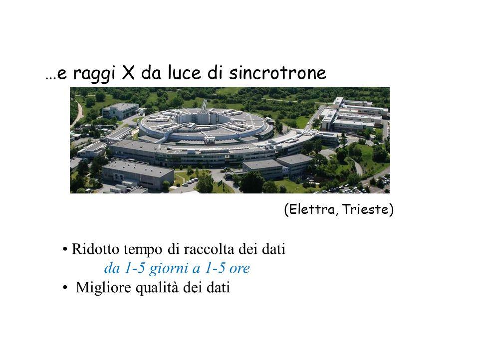 …e raggi X da luce di sincrotrone (Elettra, Trieste) Ridotto tempo di raccolta dei dati da 1-5 giorni a 1-5 ore Migliore qualità dei dati
