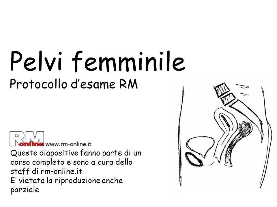 Pelvi femminile Protocollo d'esame RM Queste diapositive fanno parte di un corso completo e sono a cura dello staff di rm-online.it E' vietata la ripr