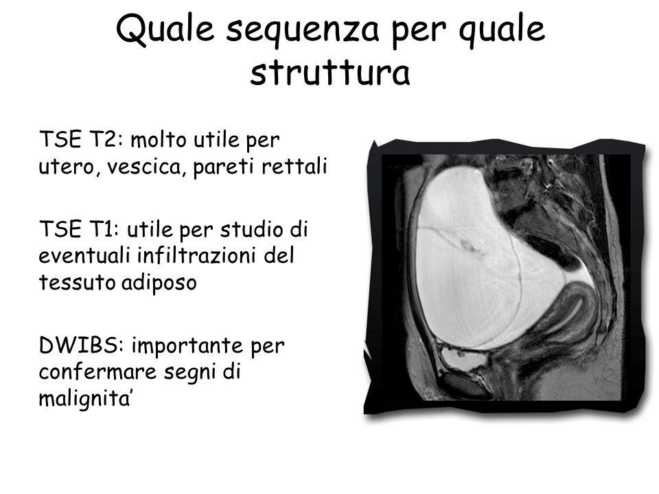 Quale sequenza per quale struttura TSE T2: molto utile per utero, vescica, pareti rettali TSE T1: utile per studio di eventuali infiltrazioni del tess