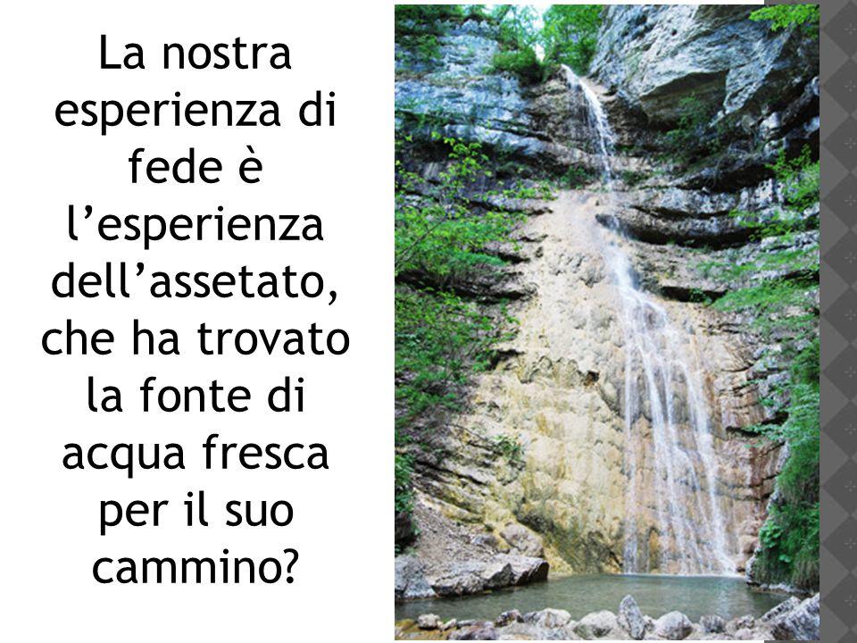 La nostra esperienza di fede è l'esperienza dell'assetato, che ha trovato la fonte di acqua fresca per il suo cammino?