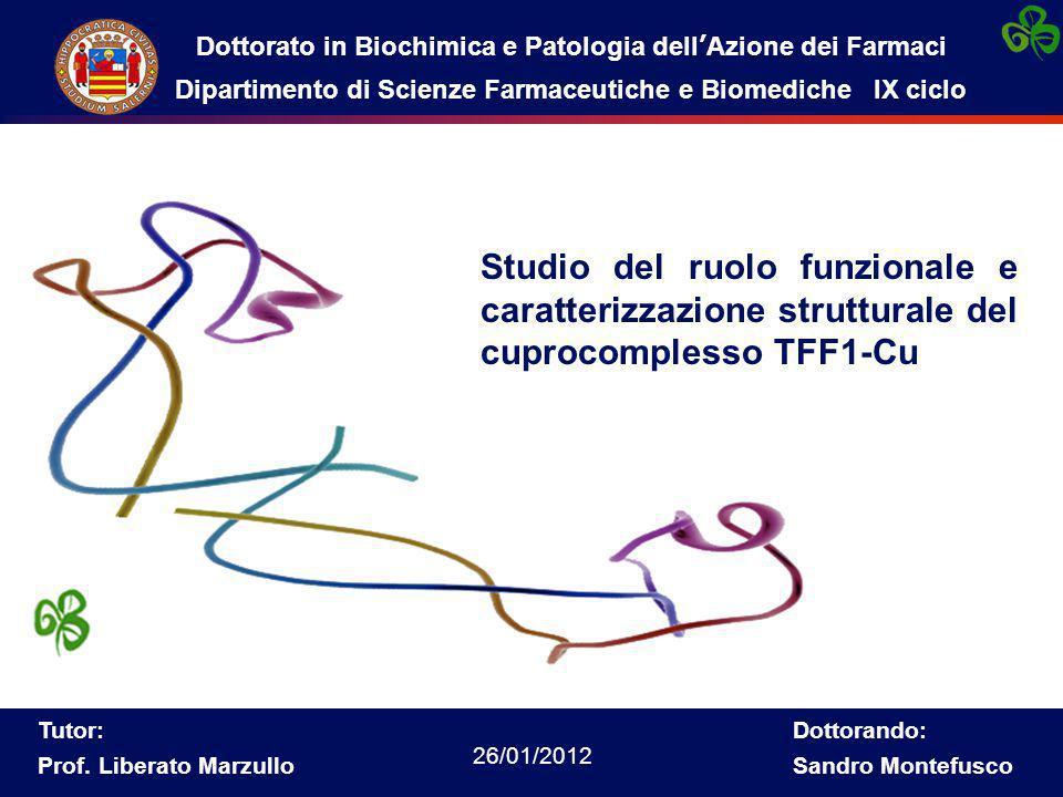 Studio del ruolo funzionale e caratterizzazione strutturale del cuprocomplesso TFF1-Cu Dottorato in Biochimica e Patologia dell'Azione dei Farmaci Dipartimento di Scienze Farmaceutiche e Biomediche IX ciclo Tutor: Prof.
