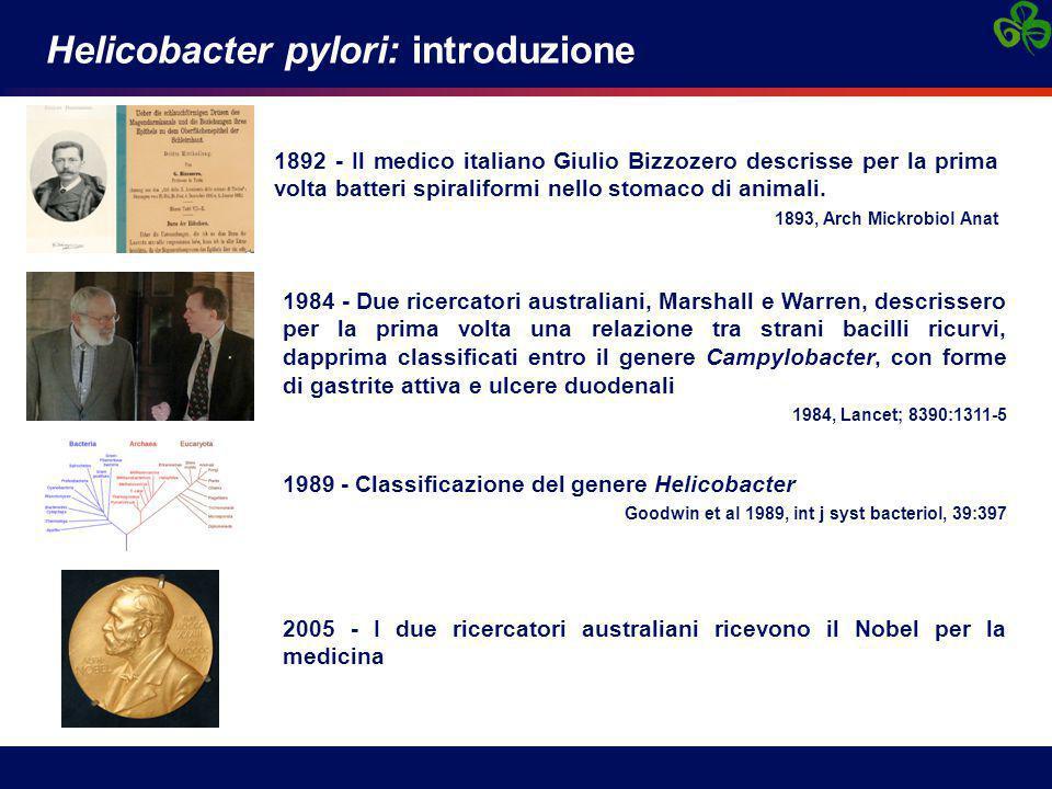 Helicobacter pylori: introduzione 1892 - Il medico italiano Giulio Bizzozero descrisse per la prima volta batteri spiraliformi nello stomaco di animal