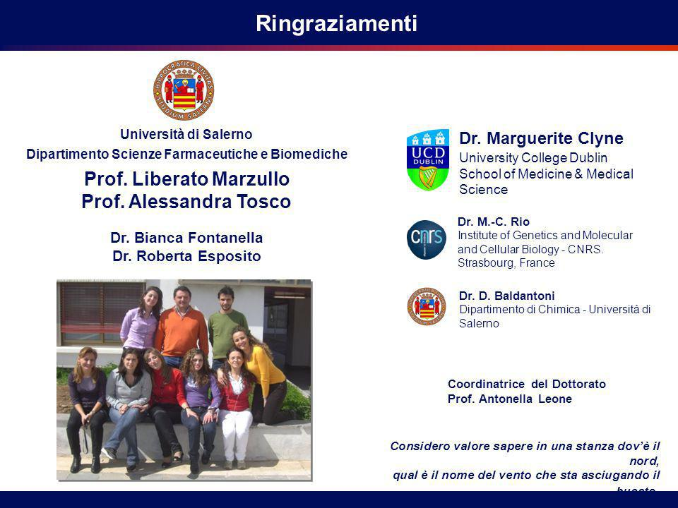 Università di Salerno Dipartimento Scienze Farmaceutiche e Biomediche University College Dublin School of Medicine & Medical Science Ringraziamenti Pr
