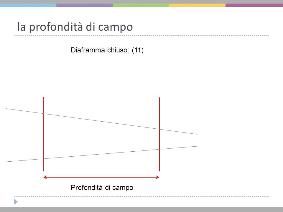 la profondità di campo Diaframma chiuso: (11) Profondità di campo